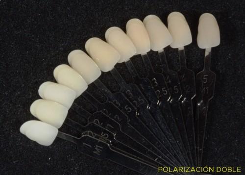 Muestrario dientes 02 doble polarizacion