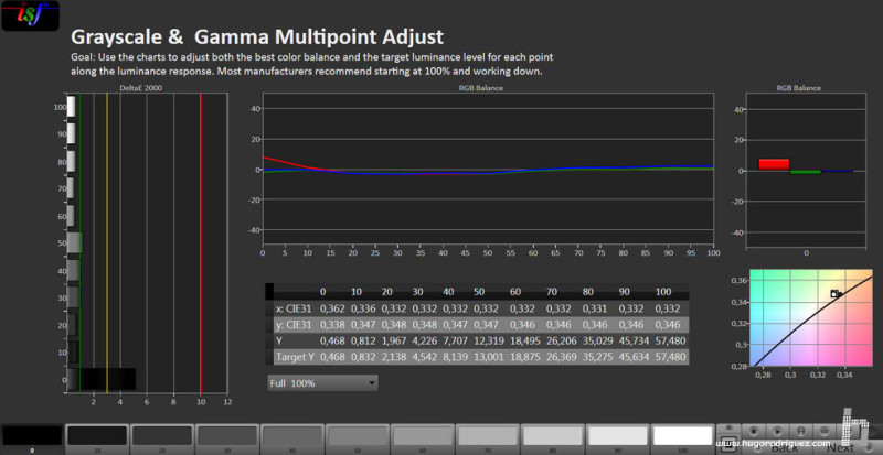 CALMan Gamma Results SONY Trinitron TVM